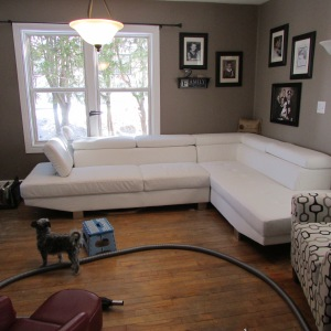 Spring Cleaning Living Room 2015